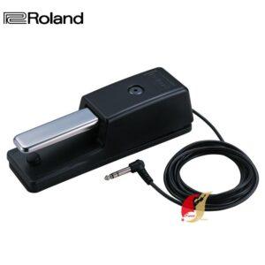 樂蘭 Roland 延音踏板 DP-10 公司貨保固